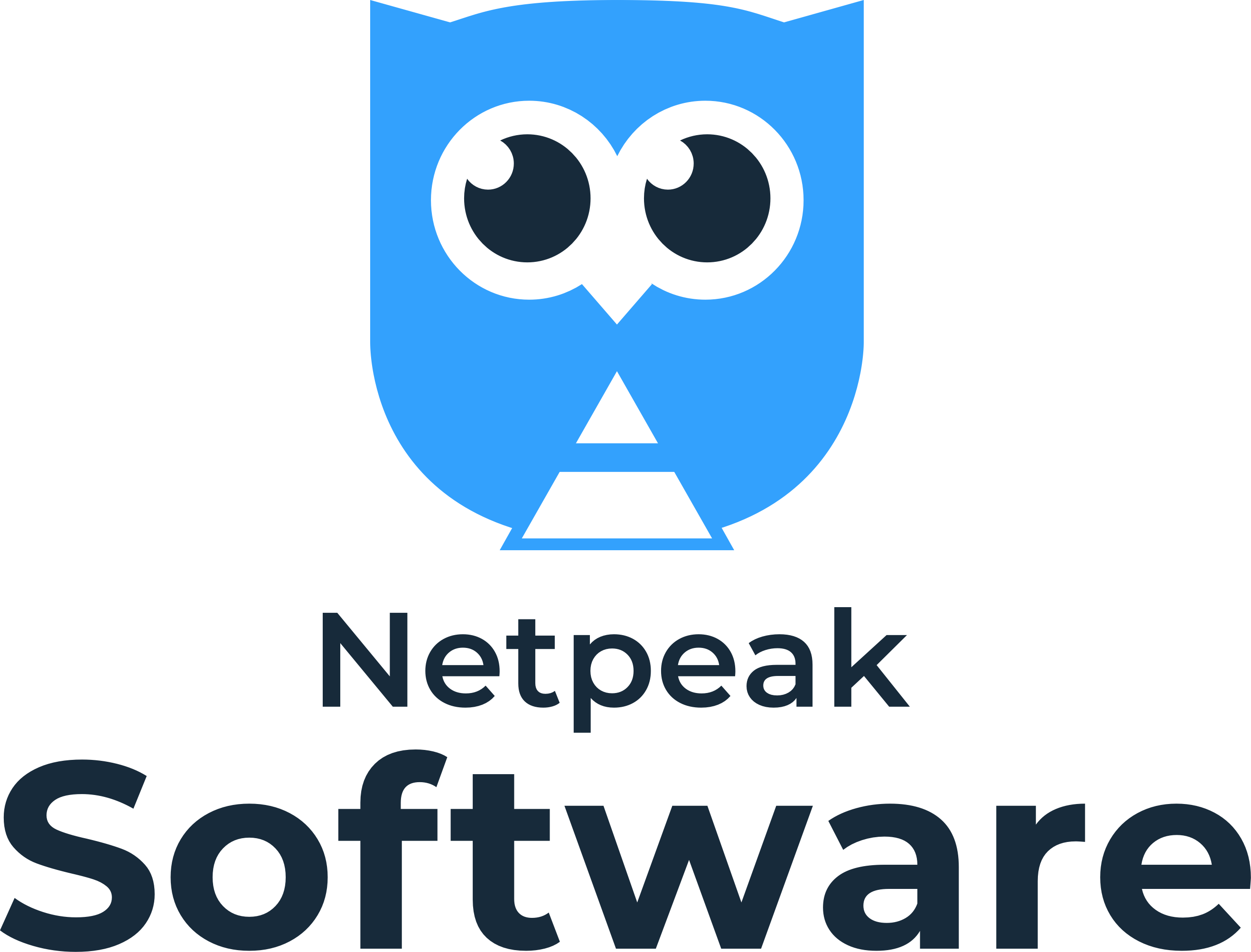 Netpeak Software EN